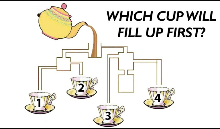Today's challenge: Which cup will fill up first?