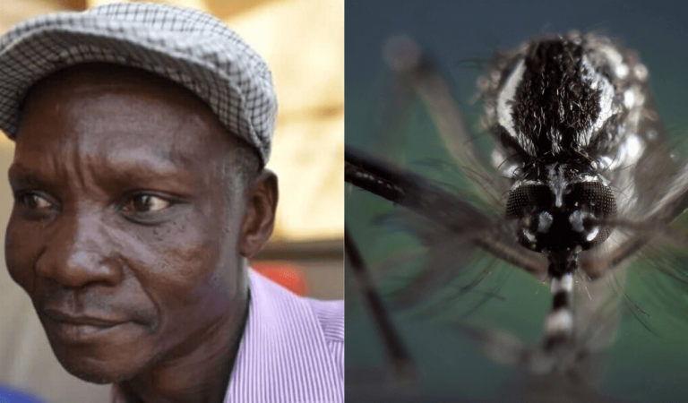 Man whose deadly farts 'can kill mosquitoes hired to create Mosquito Repellent made from his intestinal gas'